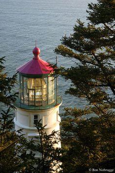 heceta head, head lighthous, beauti place, lighthouses, light hous, oregon coast, beacon, travel, coast road