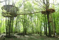 Be Robin Hood for a few days during your vacations in a treehouse robin hood