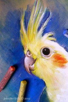 pastels, pet portraits, art blog, artblog, cockatiel, birdi, birds pastel drawing, anim art, oil pastel