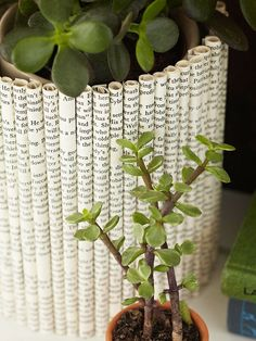 Roll It Up Vase    Cut old book pages into rectangles; then roll each one tightly and secure it with paper glue. Attach the rolls to the sides of a glass cylinder with double-stick tape.