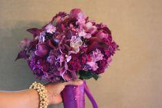 Purple and fuschia