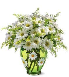 flower arrang, daisi bouquet, idea, spring flower, flower bouquets, daisi crazi, daisies, flowers, daisi flower