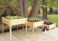Square Cedar Raised Garden Planter - 3' x 3'