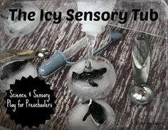 'The Little Penguin' and an Icy Sensory Tub