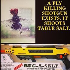 I CAN THINK OF A FEW OTHER THINGS I'D USE THIS FOR. demons, fli, cops, bugs, weapon, shotgun, chinchillas, ghost, salt