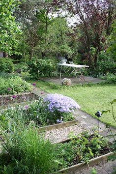 Madelief | May garden, raised beds w/gravel walks in-between.