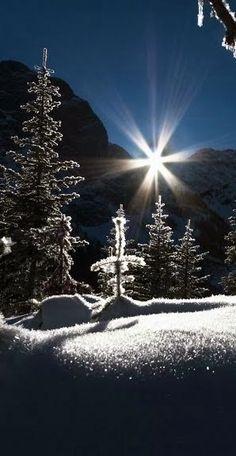 TwistMaterial: Beauté d'hiver