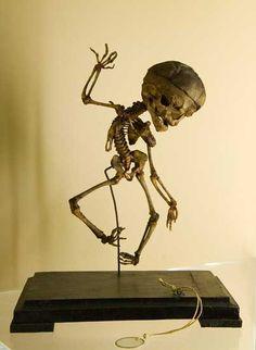 "Skeleton of a young child  Museum of Anatomical Waxes ""Luigi Cattezneo"" (Museo Delle Cere Anatomiche ""Luigi Cattaneo""): Bologna, Italy.Anatomical preparation; Cesare Taruffi, circa 1850"