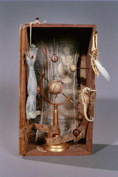 Cabinet of curiosities (Joel Daavid)
