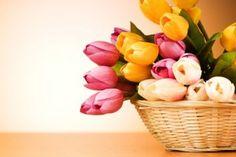 Bring Spring In! | Stretcher.com - Frugal spring decorating ideas