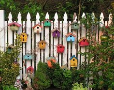 I think we may need more birdhouses. ;)