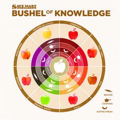 Bushel of Knowledge