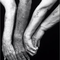 In NY where I grew up, where it was common to see older Jewish men and women with the numbers tattooed on their arms from the concentration camps where they had been incarcerated.     These survivors inspire me with their perseverance, will to live, and their ability not only to assimilate but to thrive in a new culture after being subjected to such unthinkable evil. hand, horrible histories, photograph, numbers, tattoos, inspiring photos, camps, mark seliger, people