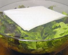 This trick using a paper towel will keep your salad lettuce fresh all week long.