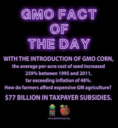We are subsidizing our own deaths.