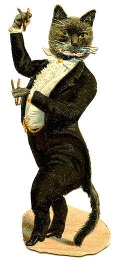 Antique Graphic - Cat in Tuxedo  Classy Cat!!