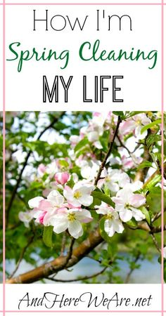 How I'm Spring Cleaning My Life   And Here We Are... #detox #health #healthyliving #wellness