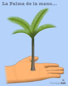 La palma de la mano - Chompipi Tuti