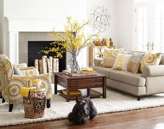 A splash of yellow to welcome spring