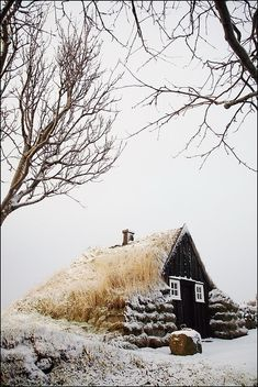 Cottage in snow, Iceland