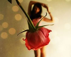 Forced Perspective Photography (girl in rose dress)