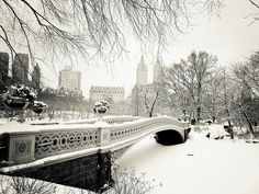 New York Winter - Central Park Snow at Bow Bridge