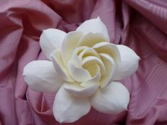 Gardenia Hair Flower by petalsandpaws on Etsy, $15.00