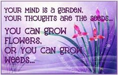 happy thoughts, think positive, weed, quote pictures, planting seeds, inspirational quotes, positive thoughts, garden, flower