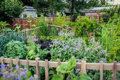 Britton Shepard, Winner of the Gardenista Considered Design Awards, Best Edible Garden—Open to All