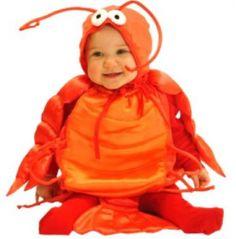 cutest babi, squar, lobster babi, first halloween, baby costumes