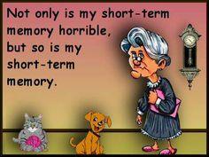 . sayings, term memori, memori loss, memori horribl, funni pictur, shorts, memories, short term memory