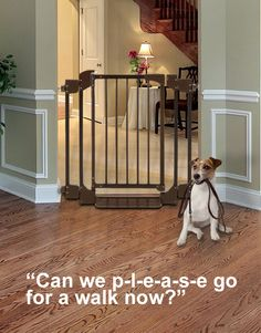 Richell pet products from our pets to yours on for Door to gate kontakt