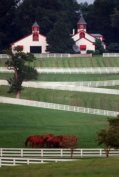 Twin Barns and A Lot Of White Fence