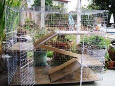 Build a Rabbit Condo