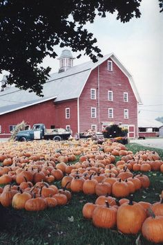 VT barn with pumpkins