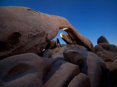 nation park, national geographic, tree nation, arches, arch rock, trees, joshua tree, national parks, rocks