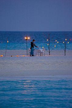 Romantic beach dinner