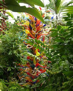2005 Fairchild Garden