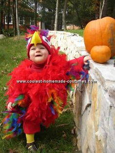 Parrot Costume - links up to a few different parrot costumes...