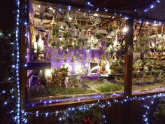 Marché de Noël à #Strasbourg #christmas