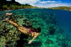 underwat, reef, beqa lagoon, explor, beqa legoon, summer, fiji, travel place, island