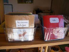 Montessori Candy: Montessori Three-Part Cards