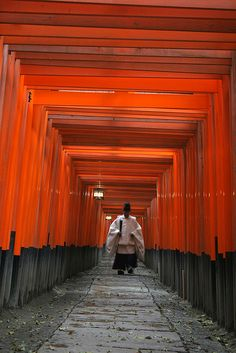 The Red Road, Fushimi Inari-taisha, Kyoto, Japan