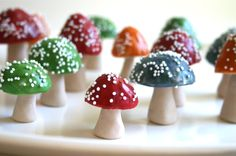 Edible Chocolate Filled Toadstools.