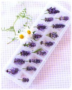Lavender ice cubes
