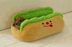 What a cute bed.