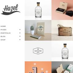 Hazel Multi-idea WordPress Theme | Best WordPress Themes 2014