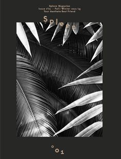 palm, graphic design, magazine covers, floral prints, black and white magazine, graphic posters, black white, offici outspleen, color black