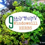 How to Make a Windowsill Herb Garden: 9 Easy Herbs to Grow