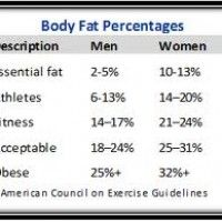 Body Fat Percentage Free Calculator